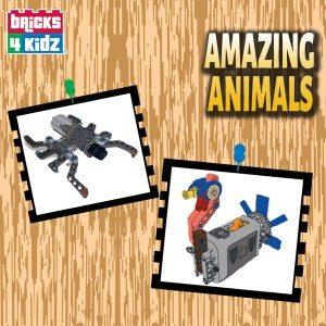 FB - Amazing Animals_Campaign Ad Image 600x600